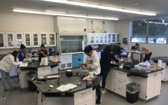 Sophomores Get Hands-On with their Materials Science Projects