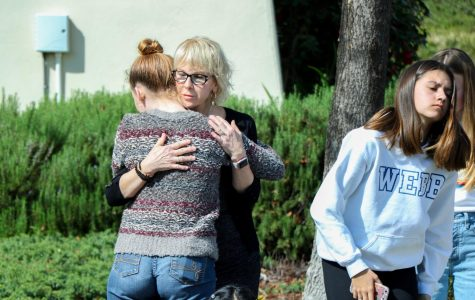 Suggestions of teachers owning firearms surface days and weeks after Parkland massacre