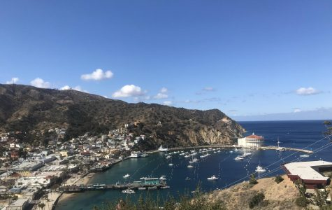 Catalina Island: History, Science & Culture