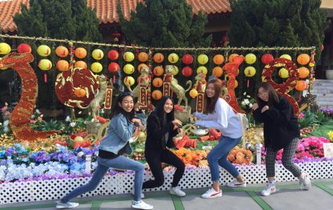LA Multicultural Adventure