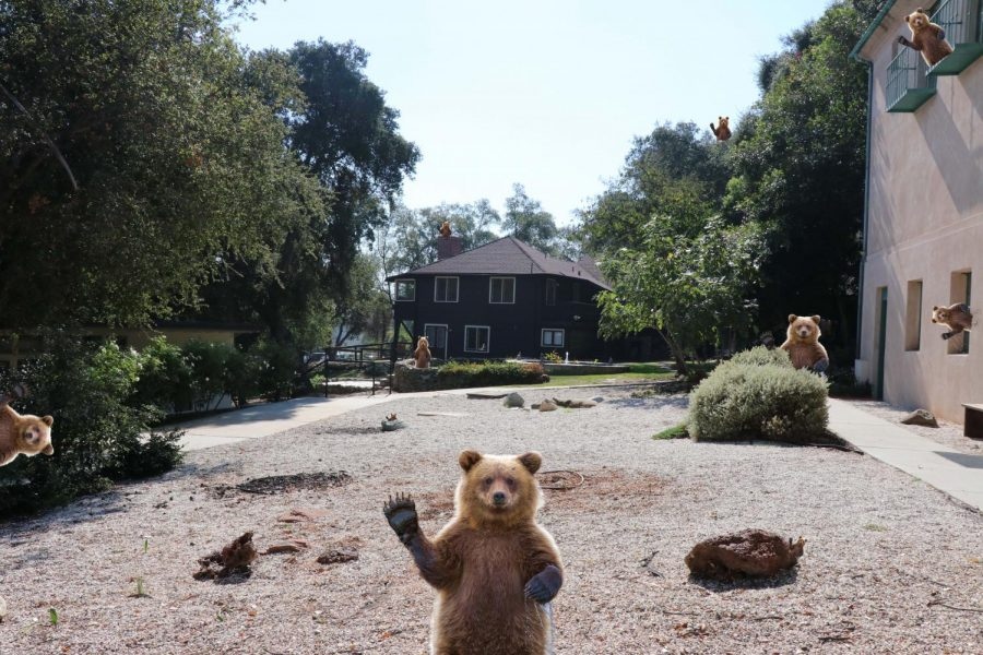 There are 10 bears in this picture, can you find them all? Graphic courtesy of Isa Flores ('21).