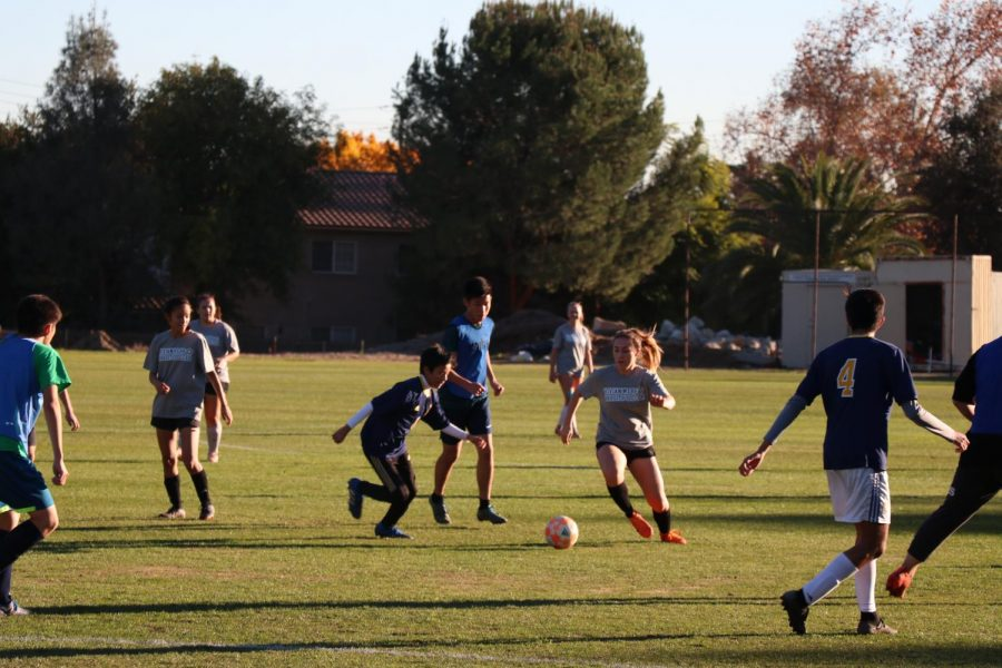 VWS varsity and WSC JV soccer go head-to-head
