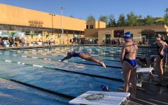 Swimmers sweep seconds across the board at League Finals