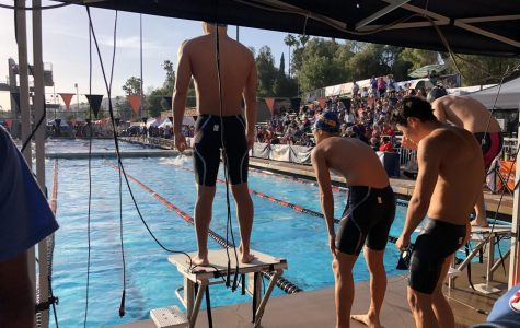 Swimmers smash records at CIF – photo gallery
