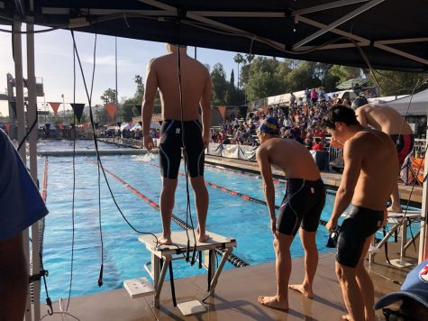 A season of change: Spotlight on VWS water polo