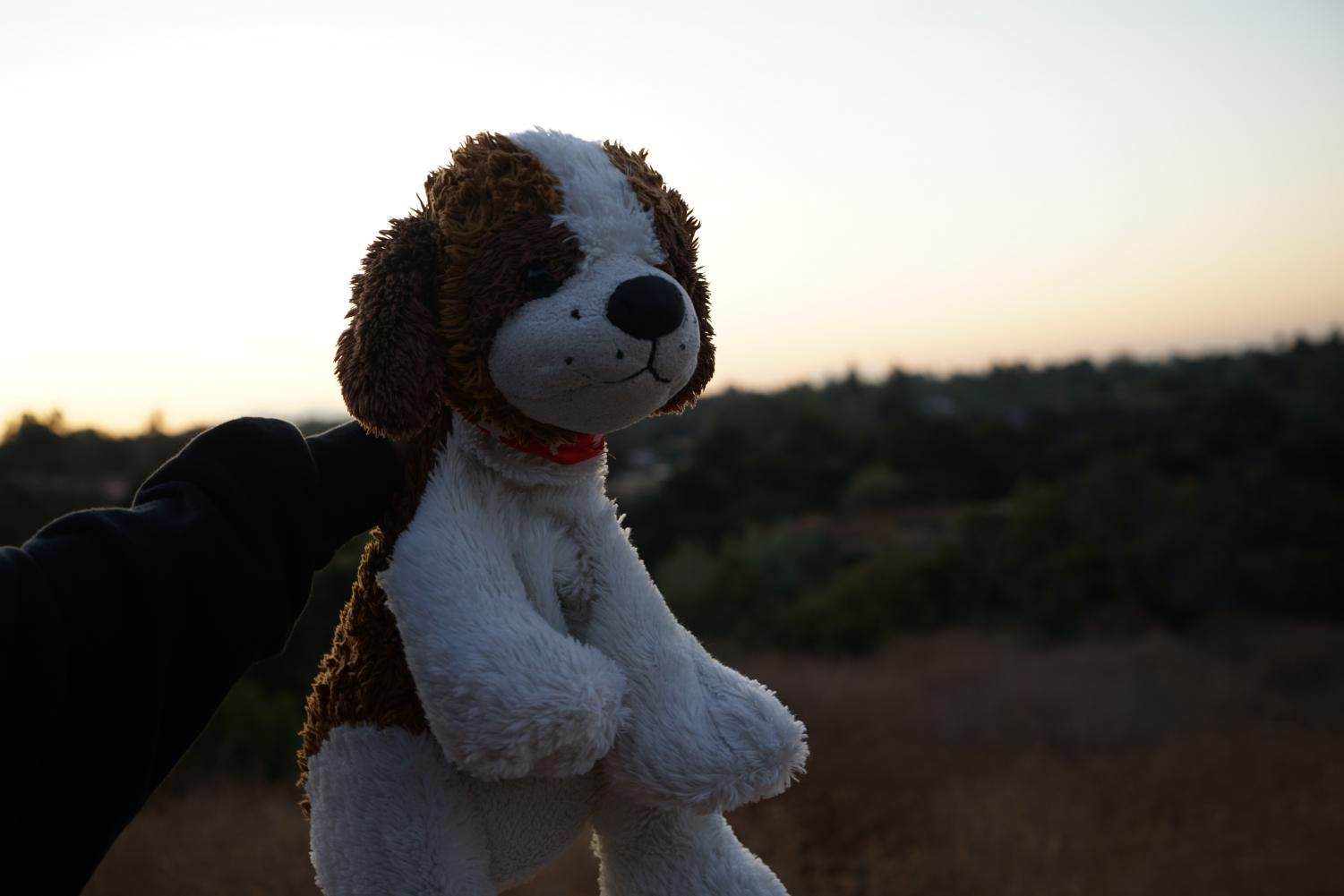 A+blanket%2C+stuffed+animal%2C+and+happy+mindset+is+the+key+to+enjoying+a+chilly+morning+up+the+hill.