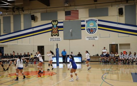 Players line up in formation to receive a serve.