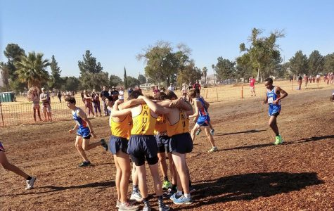 VWS and WSC cross country runners sprint their way to CIF Finals
