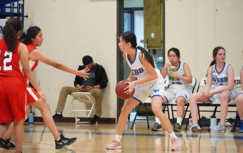 Nancy Lin ('23) holds the ball in a game.