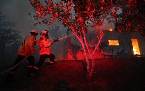 Misinformation about Australian wildfires spreads faster than the flames