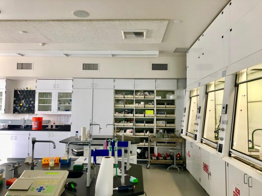 Thornton Lab awaits afternoon activity students. It is quiet before the rush of researchers come in ready to perform their experiments.