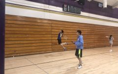 Badminton crushes birds in Long Beach