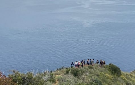 Discover Catalina: Catalina Island Marine Institute