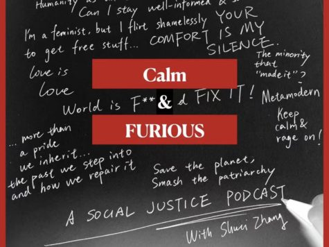 """Cover art of """"Calm and Furious,"""" designed by Shuci Zhang ("""